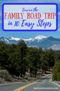 A road winding through a mountain pass. Caption reads: Survive the family road trip in 10 easy steps.