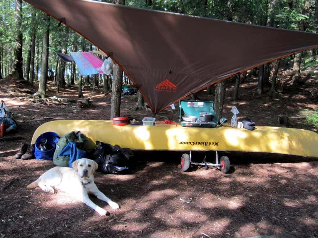 An upside down canoe serves as a camp kitchen. A yellow lab lies in front of the canoe.