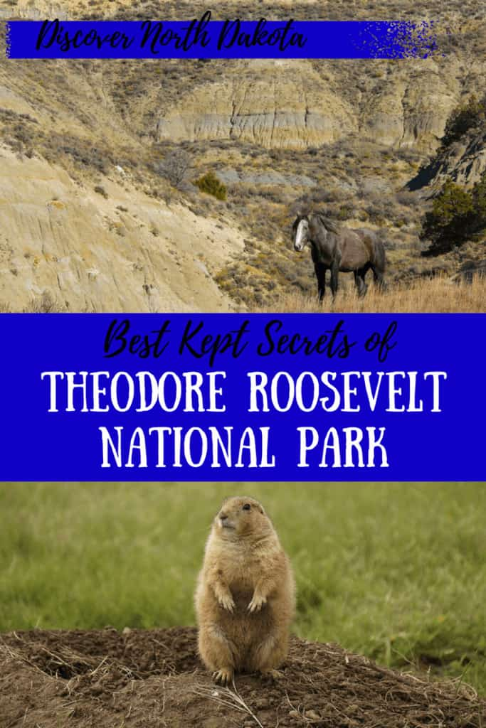 Theodore Roosevelt National Park is such a gem for families. It's a perfect blend of wildlife, culture, and history. And the trails are amazing! #nps #nationalparks