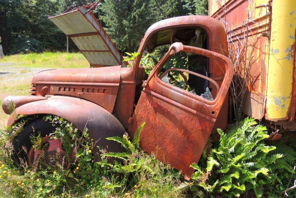 A rusty truck is being taken over by weeds at the Kestner Homestead in Quinault Rainforest.