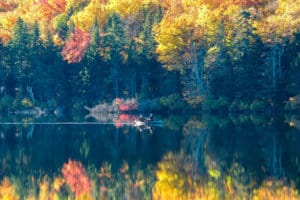 Discover the Best Fall Camping in New England
