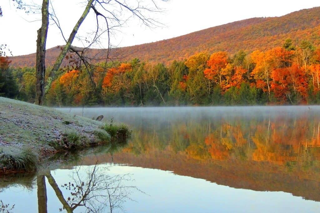 Lake Shaftsbury State Park Vermont