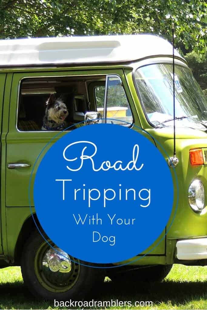 A small dog sits in the passenger seat of a VW camper van. Caption reads: Road Tripping with Your Dog for the Best Vacation Ever.