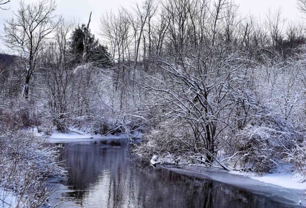 A snow covered scene with a placid stream and bare trees.