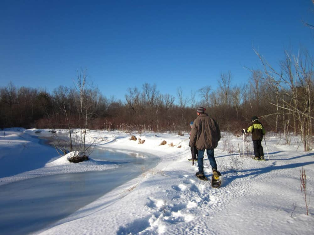 Everything You Need to Know About Snowshoeing with Kids