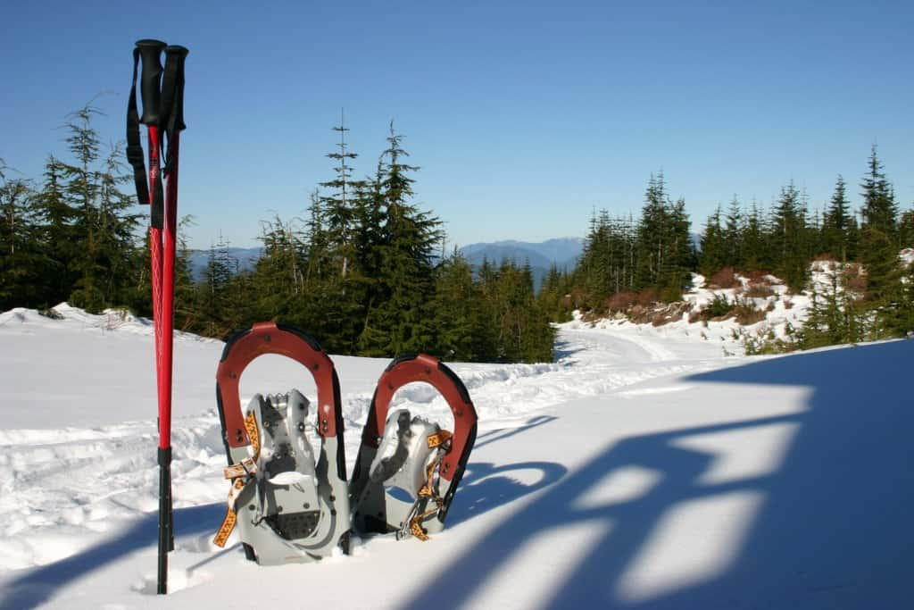 A pair of snowshoes and snowshoe polls sticking out of the snow.