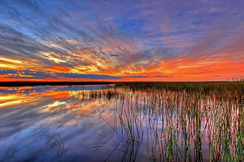A winter sunset in Everglades National Park.