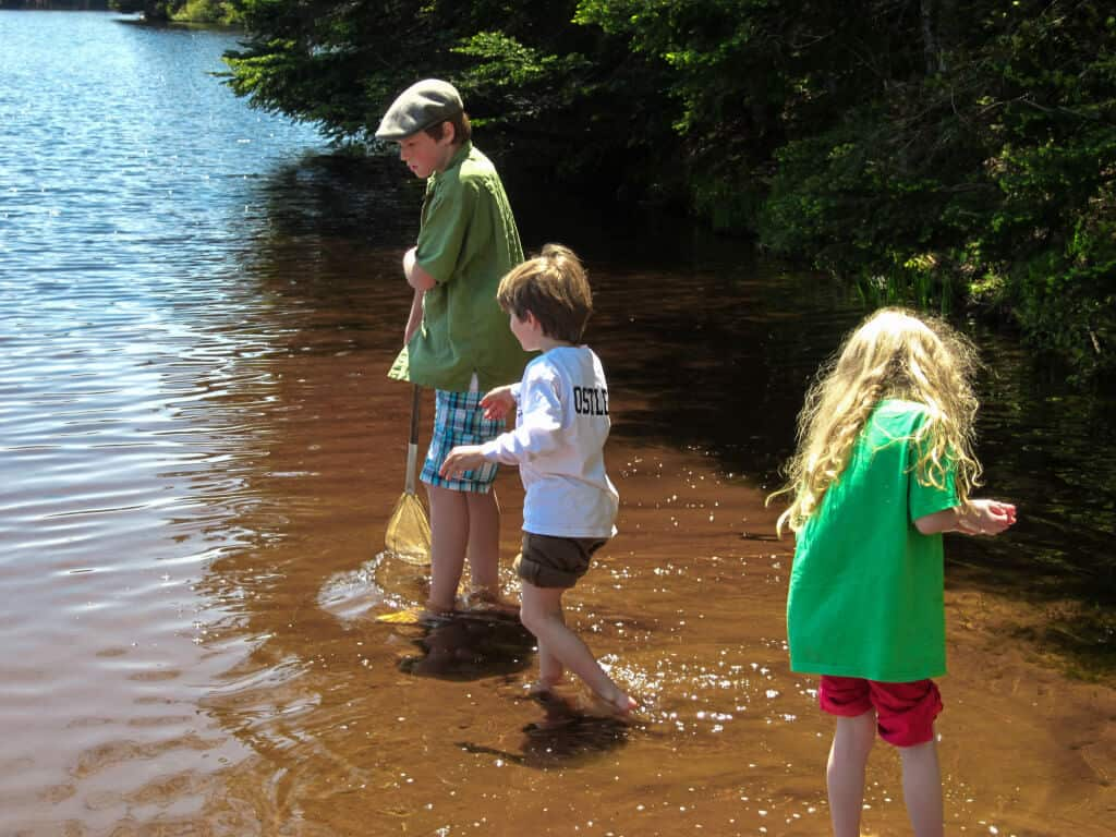 Three kids explore the shallow waters in Woodford State Park VT.