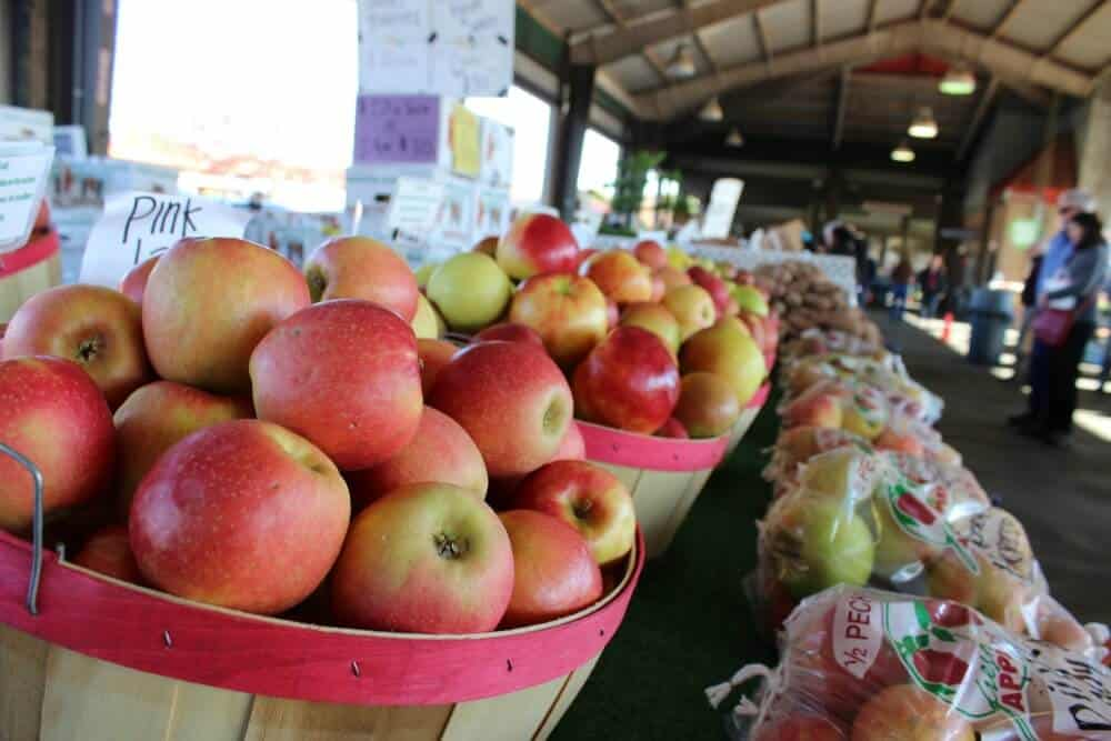 Apples available for purchase at the State Farmer's Market in Raleigh, NC