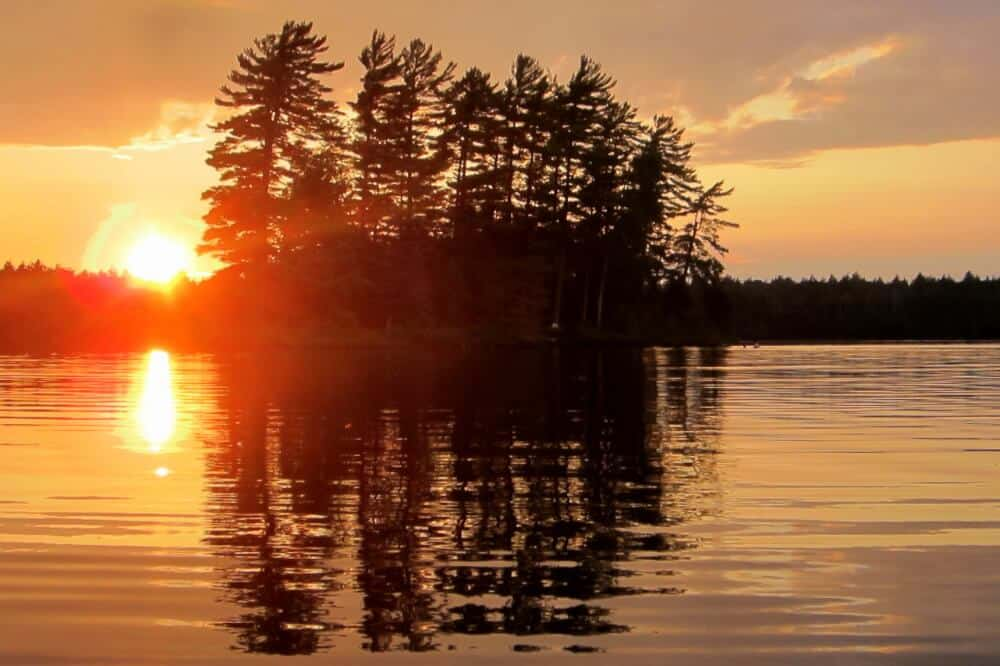 Sunset through pine trees on an island in the St. Regis Canoe Area.