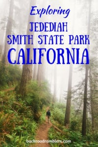 A man hiking through a redwood forest. Caption reads: exploring Jedediah Smith Redwoods State Park in California