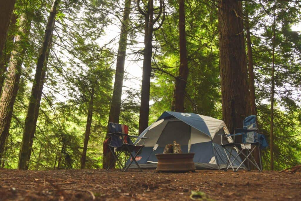 A tent set up in Jedediah Smith Redwoods State Park