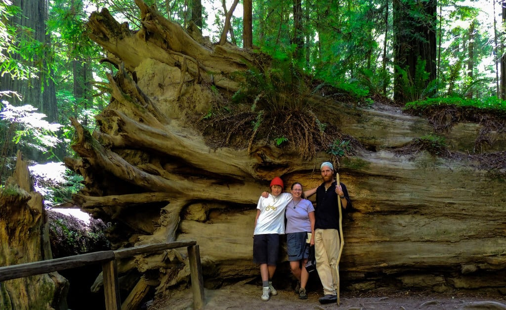 Three hikers lean against a tree in Jedediah Smith Redwoods State Park