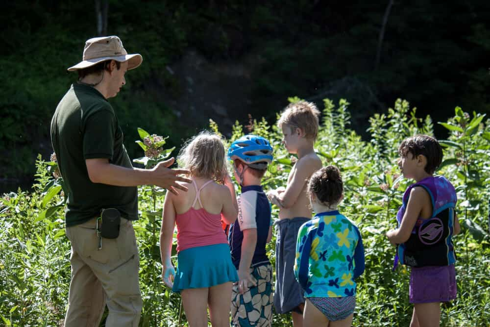 A group of kids look for butterflies during a talk at Little River State Park in Waterbury.