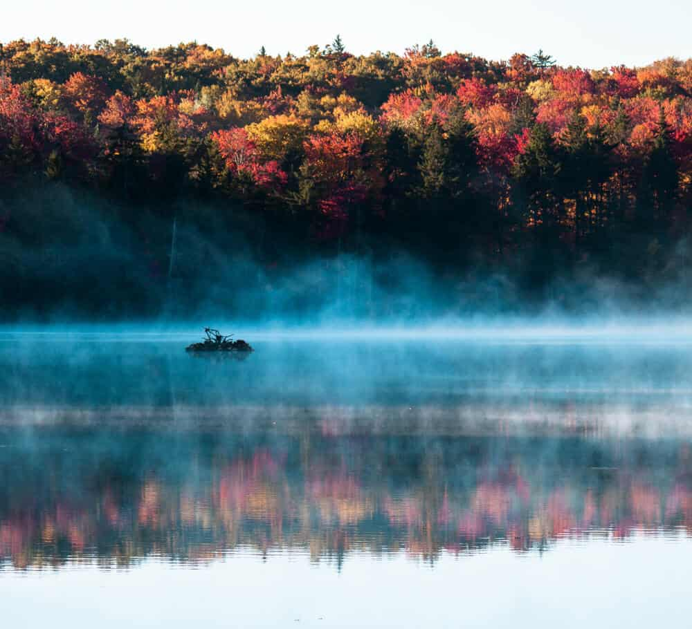 Fall Foliage Photography in Southwestern Vermont