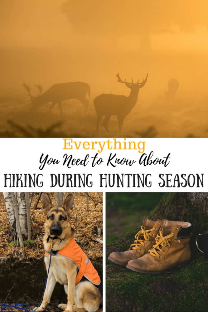 A photo collage featuring a German shepherd, deer silhouettes, and a pair of hiking boots. The caption reads: everything you need to know about hiking during hunting season