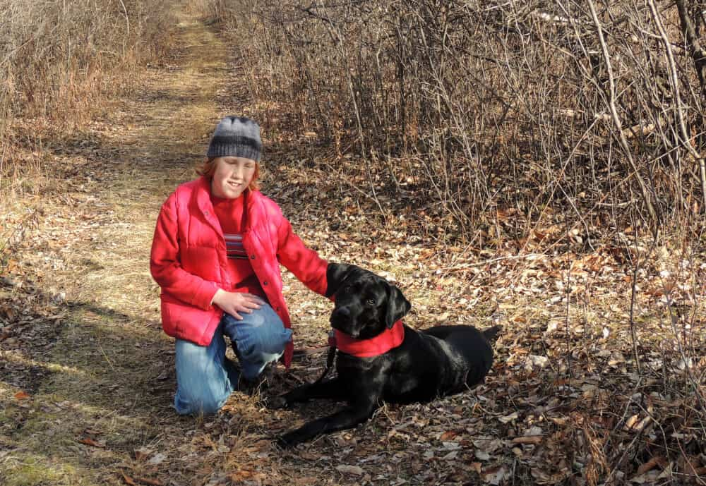 A young boy and a black Labrador pose on a hiking trail. They are both wearing red to stay safe during hunting season.