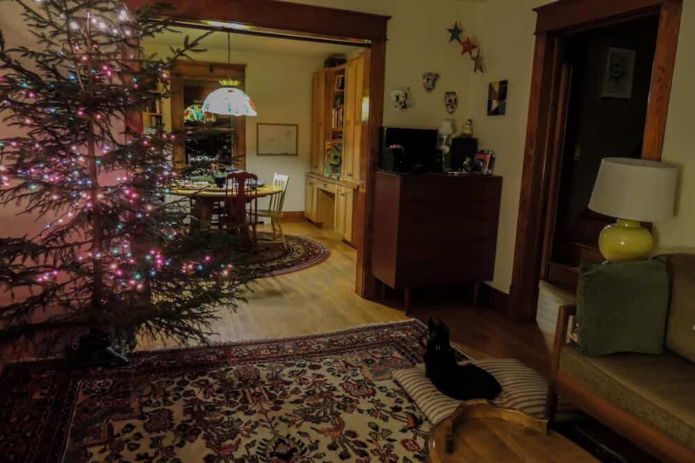 A decorated Christmas tree in a small living room