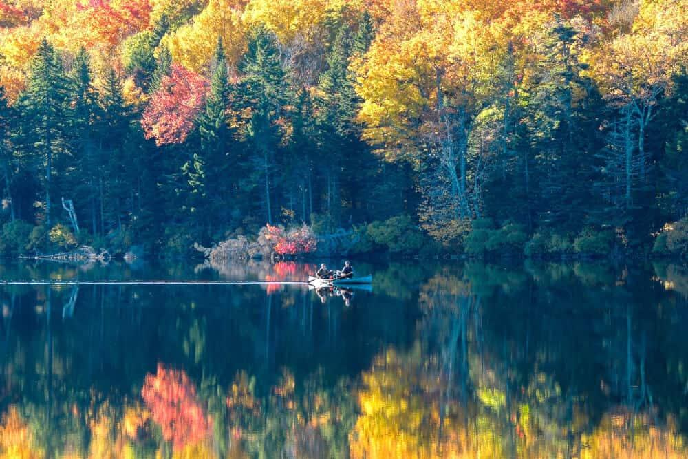 Fall Photo Inspiration