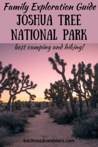 A trail in Joshua Tree National Park at sunset. Caption reads: Family Exploration Guide to Joshua Tree National Park