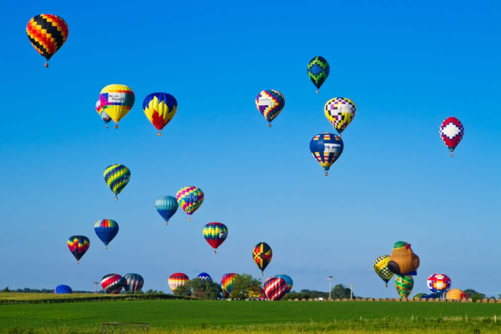 Image result for new mexico heart air balloon show