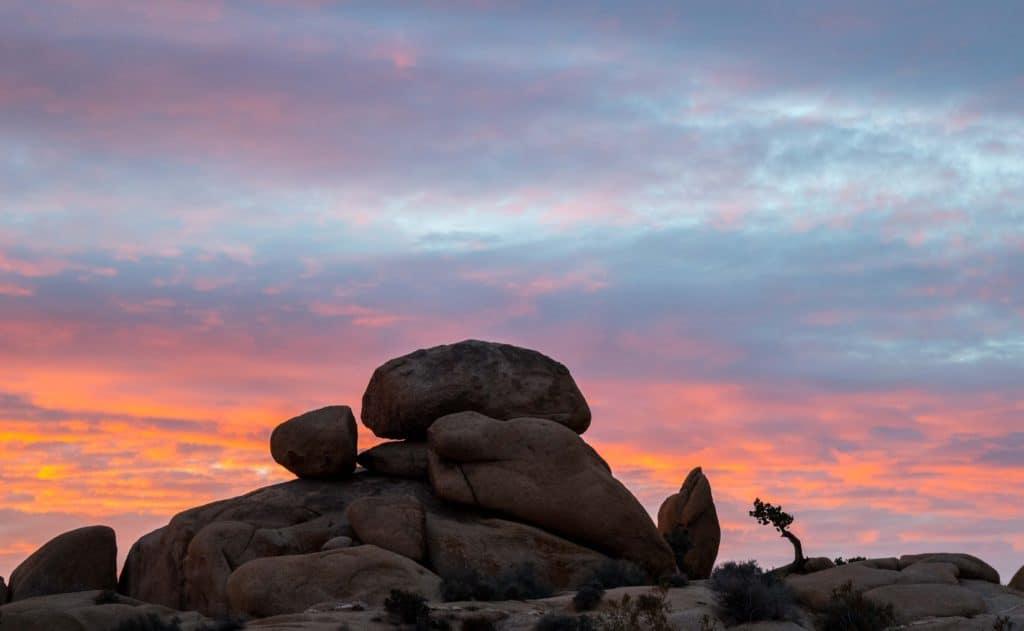 Sunrise at Jumbo Rocks Campground in Joshua Tree National Park