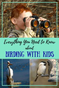 Everything you need to know about birding with kids - at home and in the field.