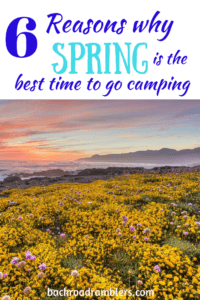 A field of wildflowers with a text overlay. Caption reads: 6 reasons why spring is the best time to go camping.