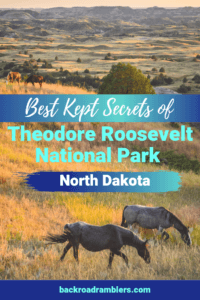 Two horses in Theodore Roosevelt National Park. Caption reads: Best Kept Secrets of Theodore Roosevelt National Park, North Dakota