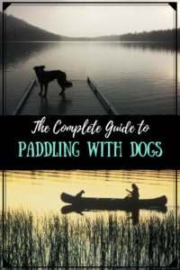 Two photos of dogs on the water. Caption reads: The complete guide to paddling with dogs.