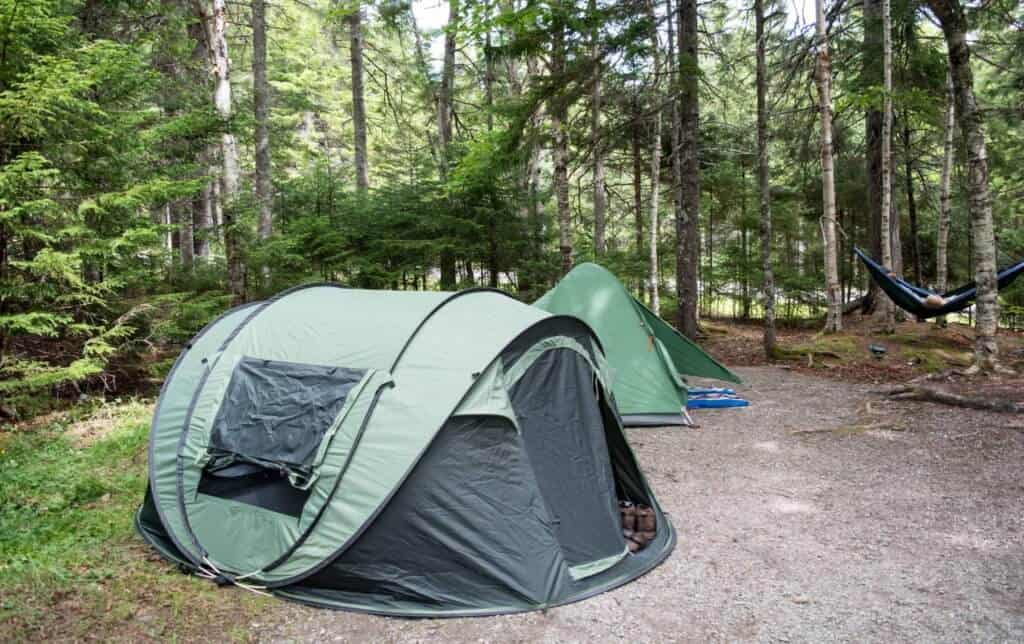 two tents set up in Point Wolfe Campground, Fundy National Park