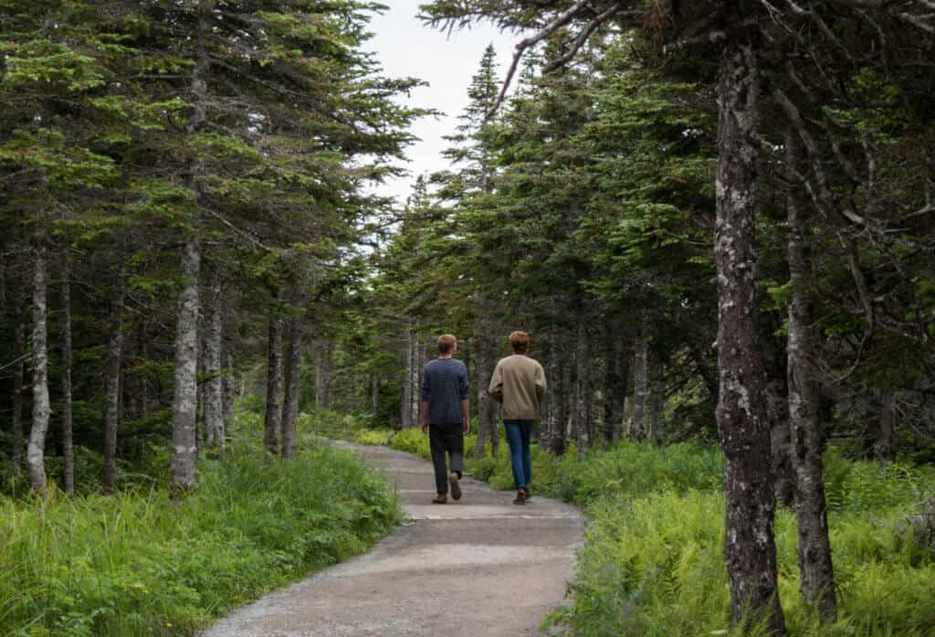 Two young men seen from the back. They are hiking along the Skyline Trail in Cape Breton, Nova Scotia.