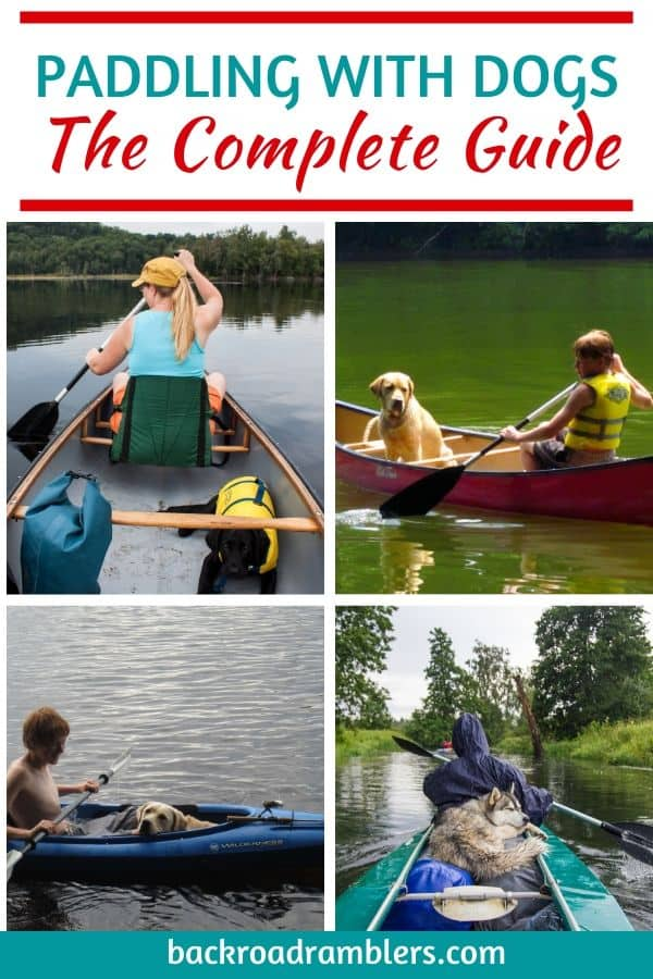 A collage of photos featuring dogs in canoes and kayaks. Caption reads: The complete guide to canoeing and kayaking with dogs