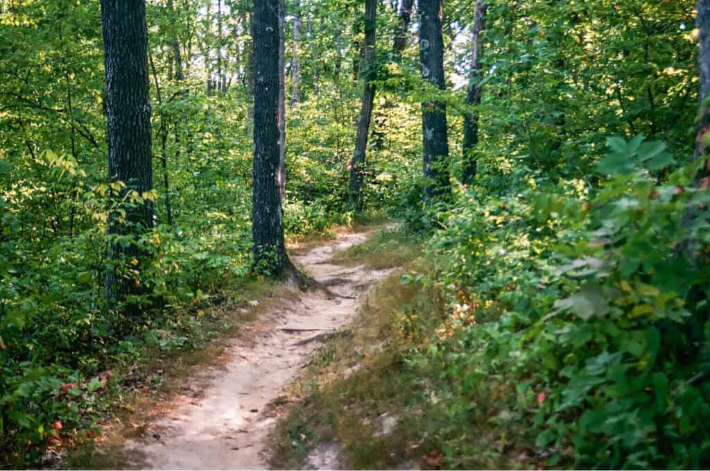 A hiking trail in Thousand Hills State Park, Kirksville, Missouri