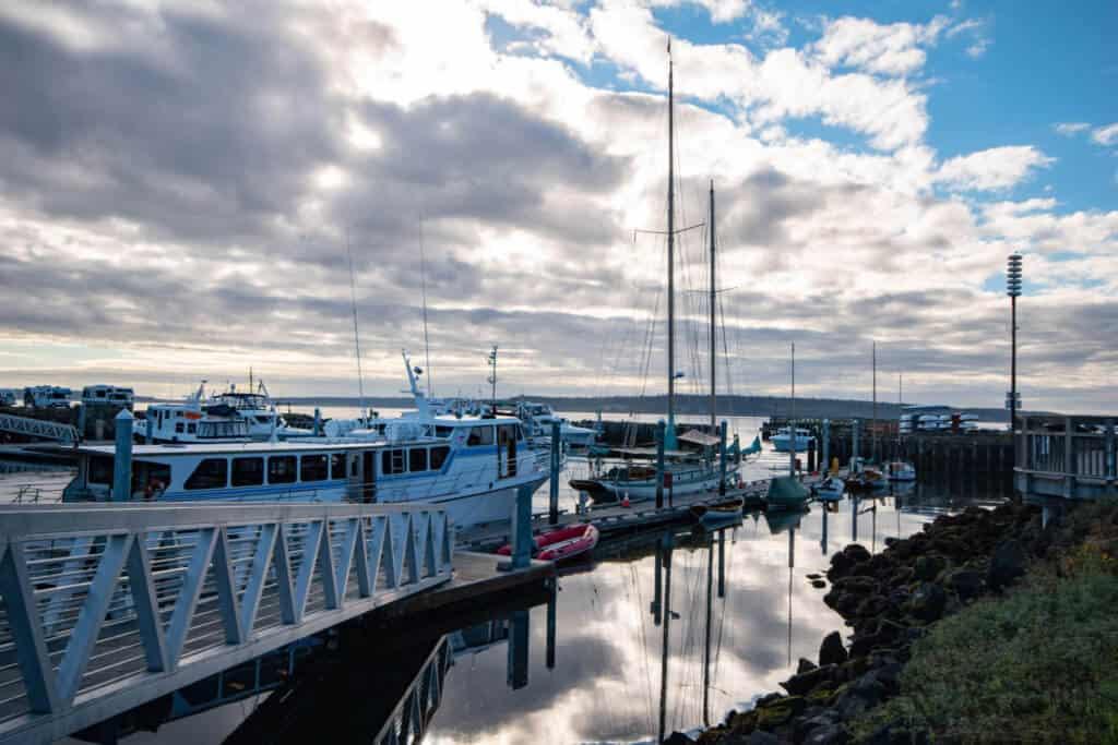 Morning reflections at the Port Townsend Marina