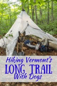 A German Shepherd in a tent with the caption: Hiking the Long Trail in Vermont
