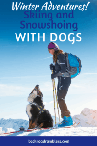A woman on skis with a dog. Caption reads: Winter Adventures! Skiing and Snowshoeing with Dogs