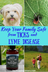 A collage of tick-related photos. Caption reads: keep your family safe from ticks and lyme disease.