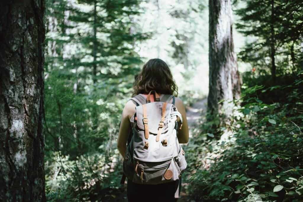 The back of a woman wearing a backpack and hiking through the woods.