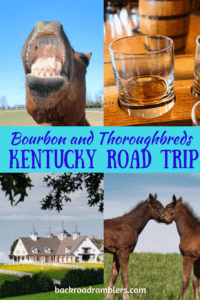 A collage of horse and bourbon photos. Caption reads: Bourbon and Thoroughbreds: Kentucky Road Trip