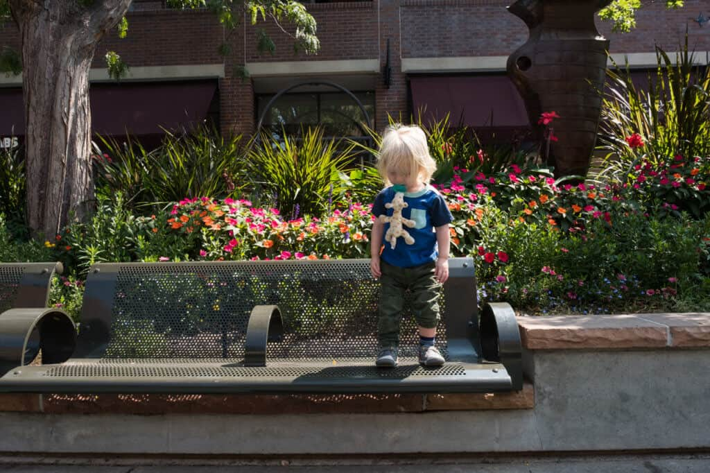 A small child stands near blooming flowers in Old Town Square, Fort Collins, Colorado