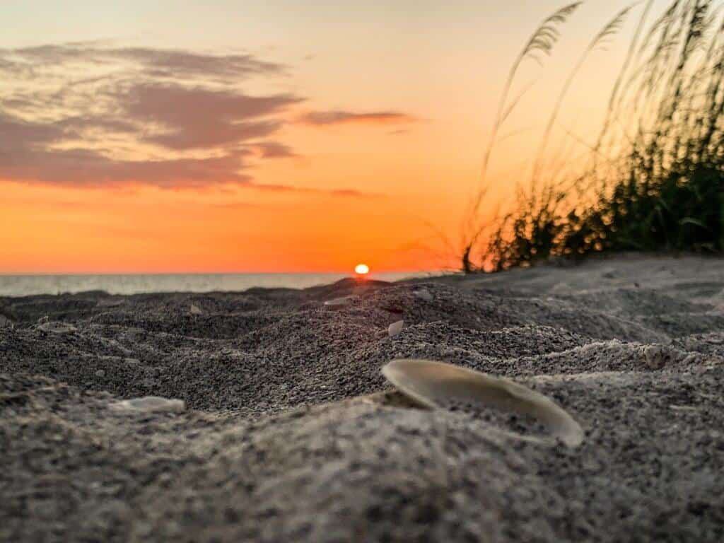 A beautiful expanse of Florida beach at sunset by Taylor Cowling