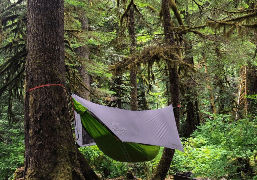 The Kammok Mantis camping hammock hangs in the forest in North Cascades National Park.