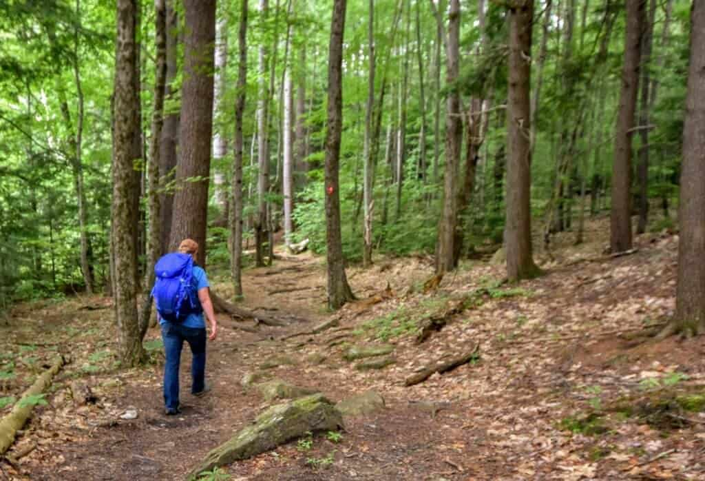 A woman backpacks along a forest trail in New Hampshire.