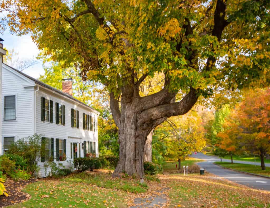 A fall scene in Bennington, Vermont