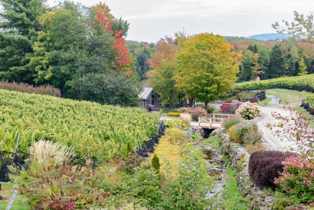 Fall foliage in the Eastern Townships of Quebec.