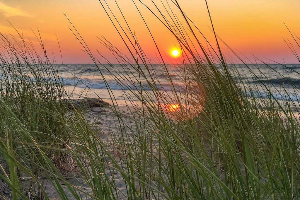 Sunset at Indiana Dunes National Park