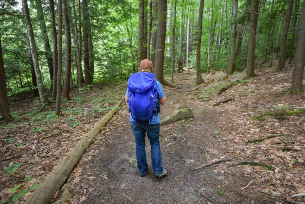 A woman stands with her back to the camera. She is on a wooded trail and wearing a blue backpack.