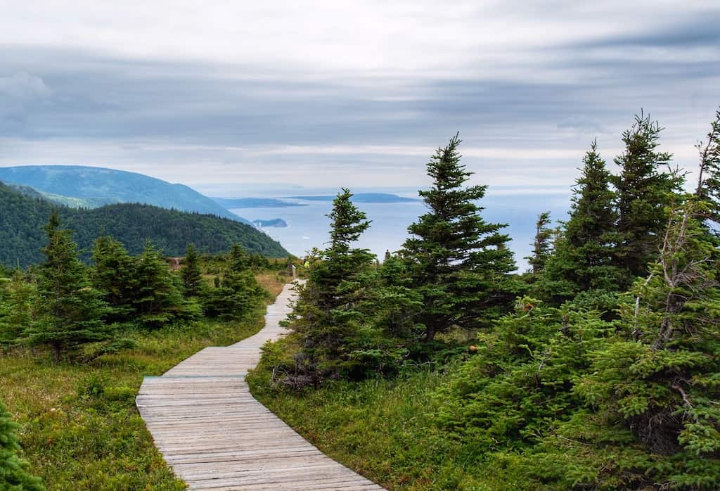 a boardwalk leading to the headlands on the Skyline Trail in Cape Breton, Canada.