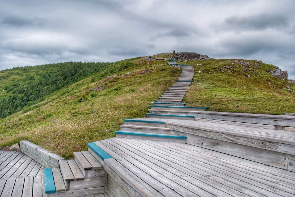 The boardwalk on the Skyline Trail near the headlands - Cape Breton Island, Nova Scotia